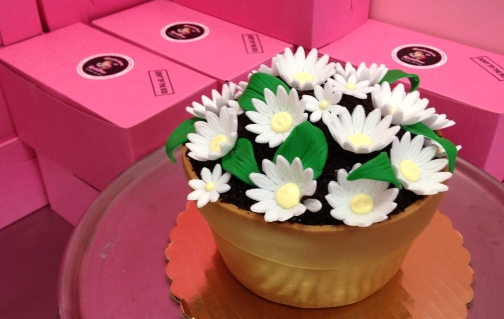 "This completely edible ""flower pot"" cake for Mother's Day has crumbled chocolate cake for ""dirt"" and handmade sugar daisies.  It is one of the many specialty cakes at the Confections of a Rock Star bakery on Cookman Avenue."
