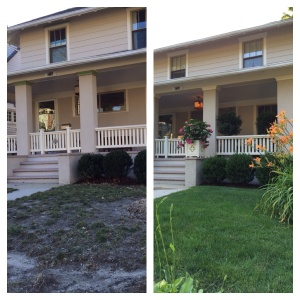 Before and six weeks after TruGreen professionals began managing my lawn.