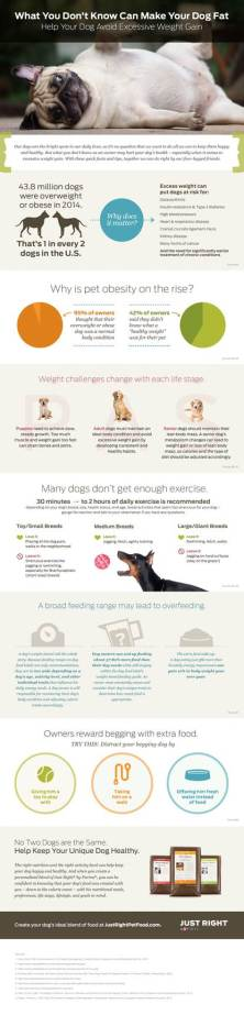 The dog nutrition experts at Just Right by Purina have released results from a revealing new study on obesity in dogs.